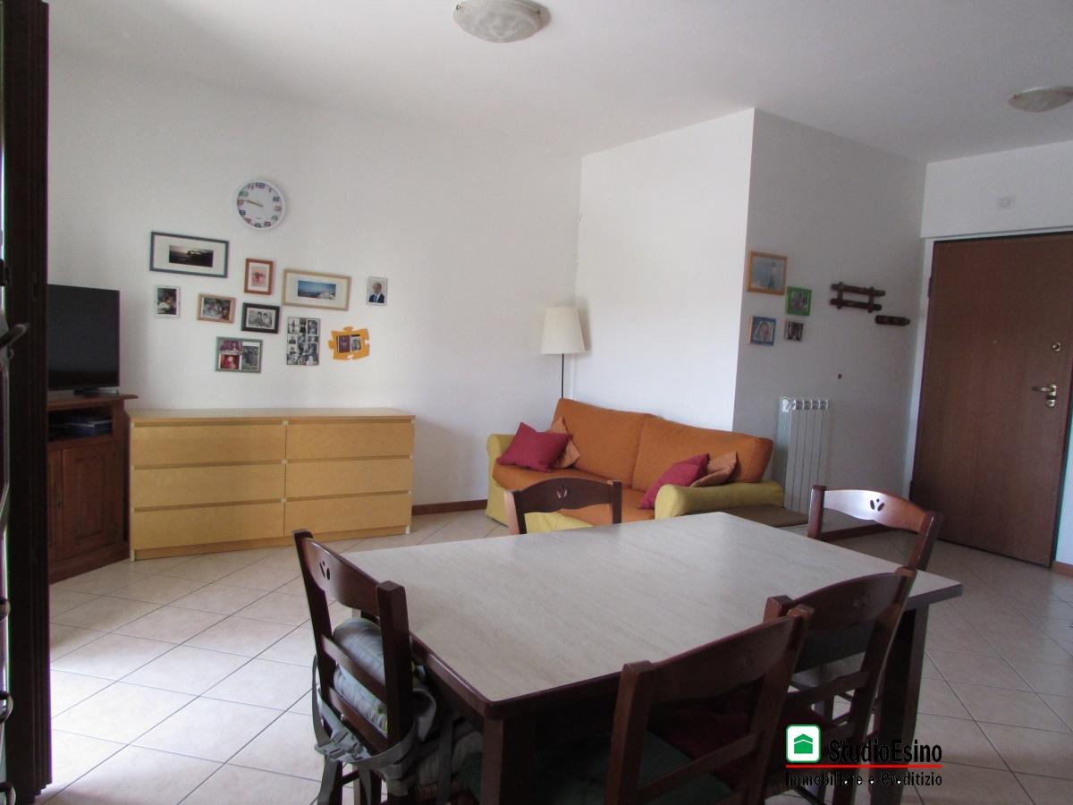 Appartamento Castel di Lama AP915963